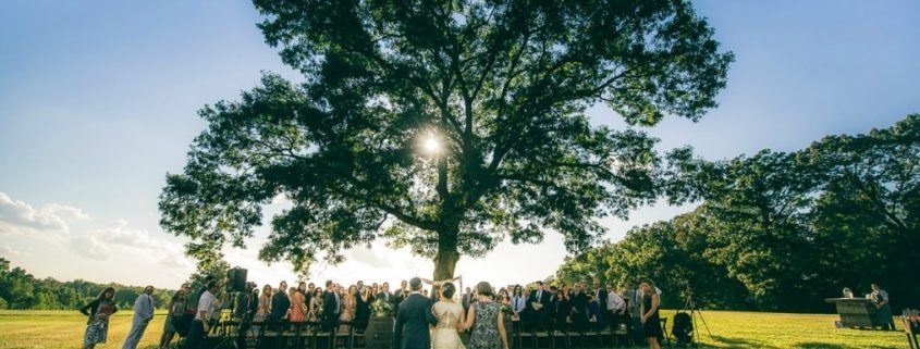 summerfield farms wedding dj